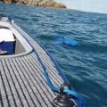 Халка Railblaza Eye25 Pair BLK - ще пази въжетата от оплитане и разнищване